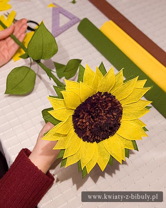 Słoneczniki z bibuły - instrukcja